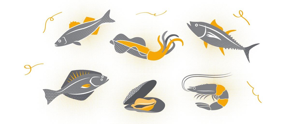 Balık, Deniz Mahsülleri Çeşitleri ve Tazeliği Anlamak